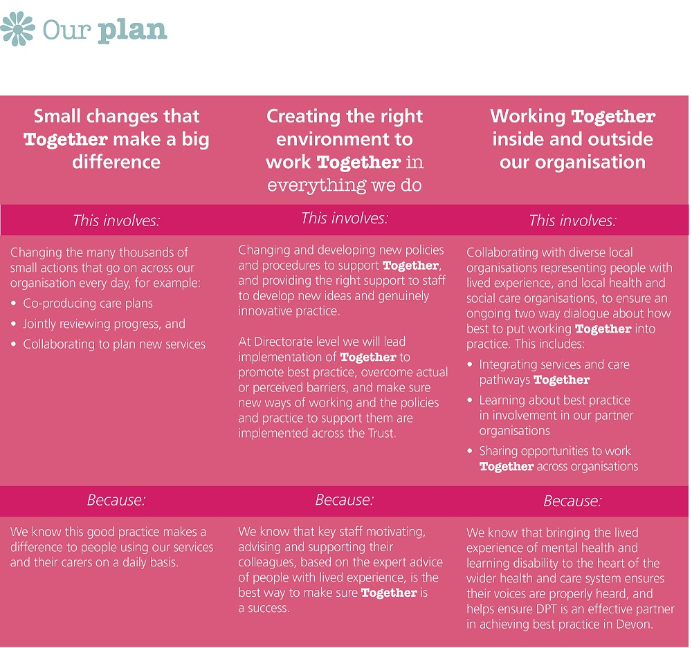 DPT Together Our Plan infographic