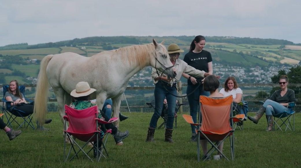 The Psychology team at Langdon hospital spend time at Horsemanship for Health